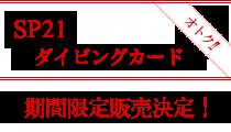〝石垣島SPダイビングカード